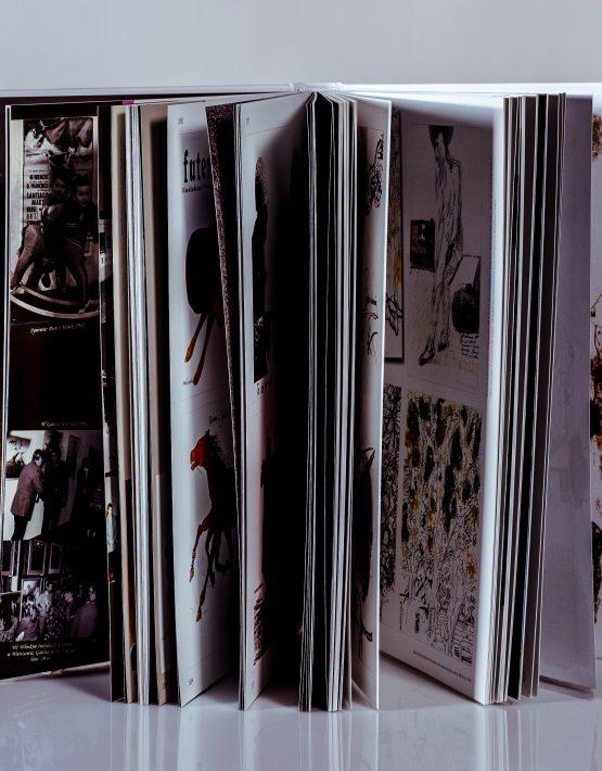 Wnętrze książki Marian Nowiński - Plakat - rysunek - kolor