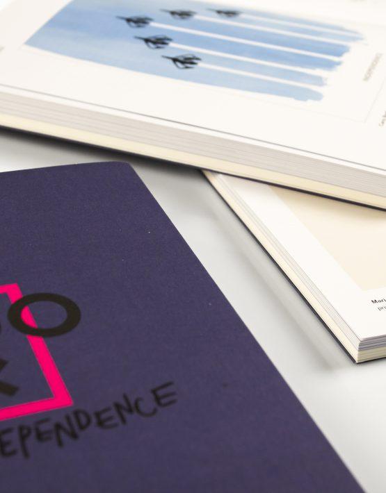 Zdjęcie książek 100 x independence